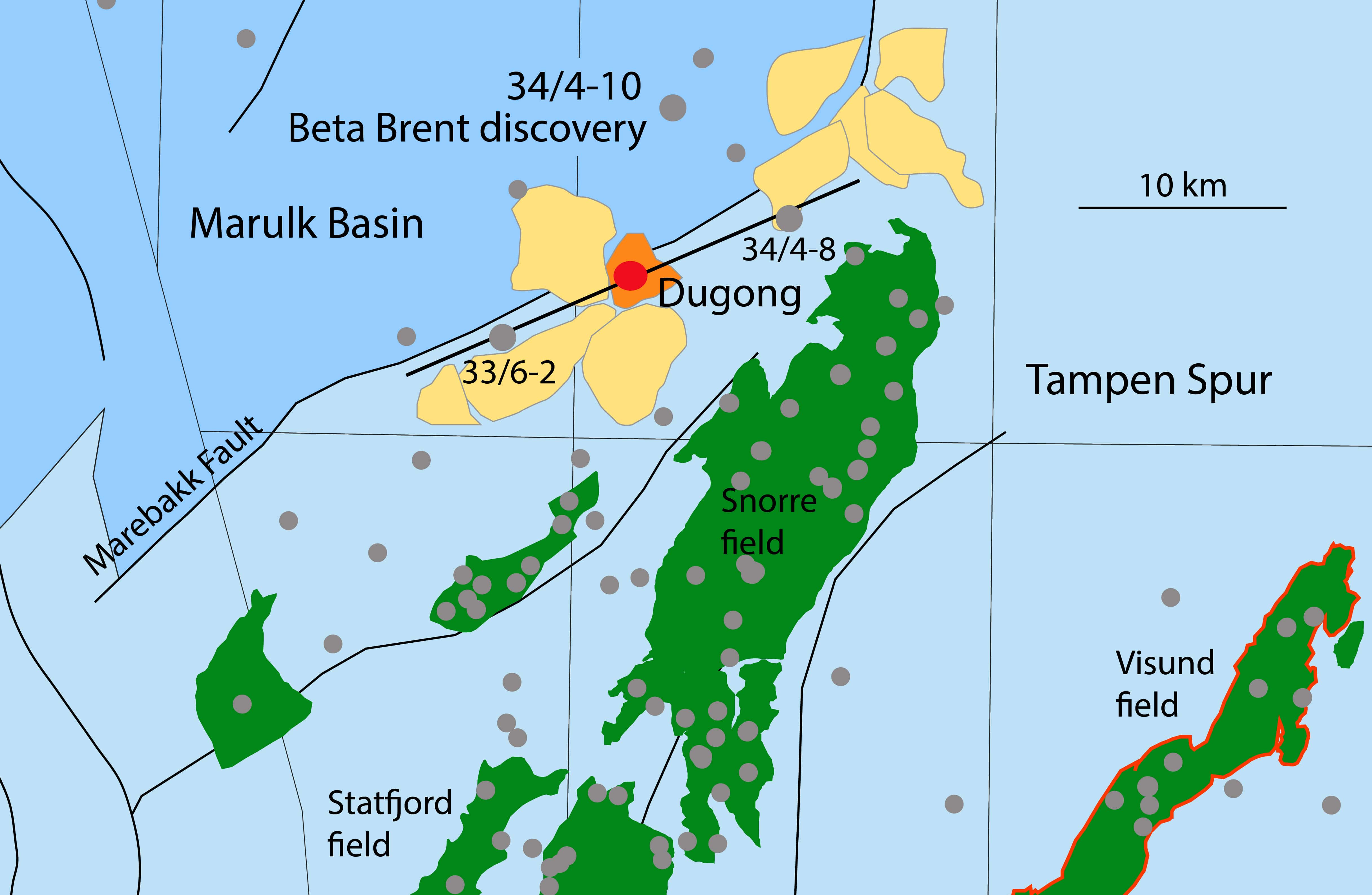 Dugong discovery confirmed