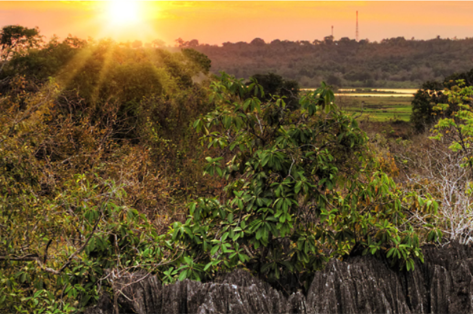 A virtual trip to the heartlands of the African E&P sector
